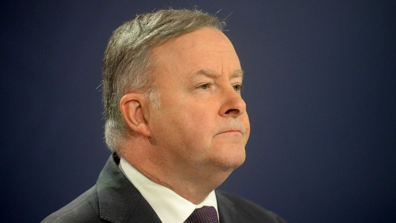 Albanese 'pretended he didn't say what you saw him say' after copping criticism