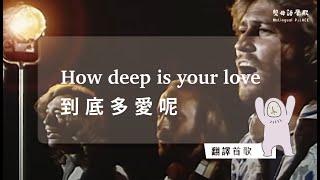 【雙母語翻譯】How deep is your love 蕭光頭中譯版