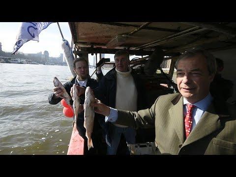 نشطاء يلقون أسماكا في التيمز احتجاجا على اتفاق بريطانيا مع الاتحاد الأوروبي