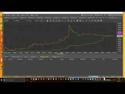 Big Whale profit algo automated forex trading lesson