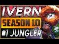 Ivern is the Best Jungler in Season 10! Ivern vs Nidalee In-depth Gameplay | League of Legends