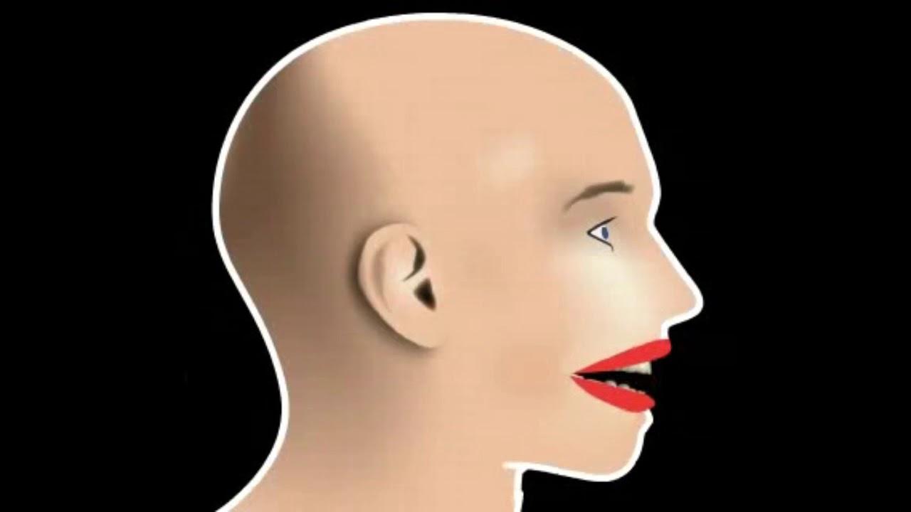 Articulatia temporo mandibulara
