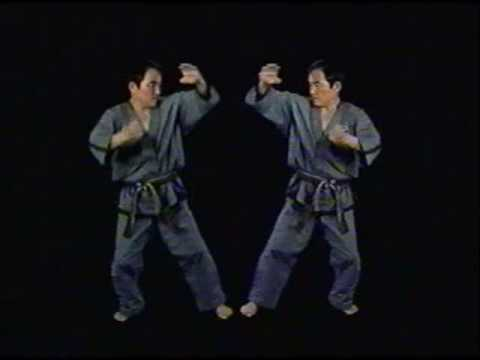 Yun-Jung-Do-Discipline-1991-TV-adds-U-Tube.wmv