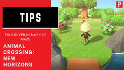 Animal Crossing New Horizons: How to Find Rover in May Day Maze