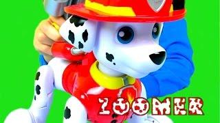 МАРШАЛ  ЩЕНЯЧИЙ ПАТРУЛЬ PAW Patrol game Video for kids Paw Patrol toys