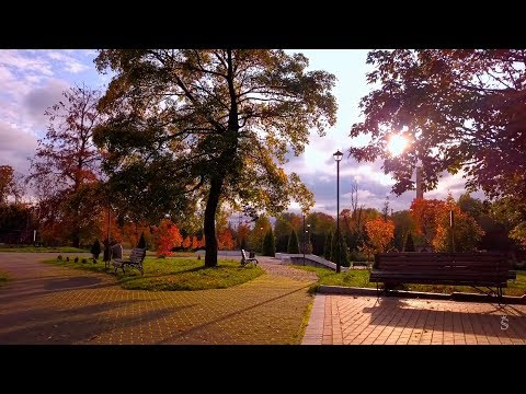 Осень в Калининградской области