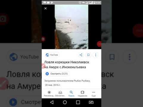День КОРЮШКИ Николаевск-на-Амуре