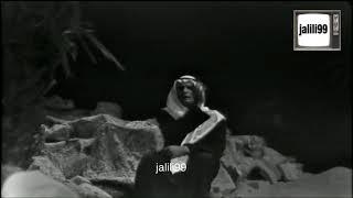 HD 🇰🇼 عيني ضناها السهر / عبدالحليم حافظ / تصوير تلفزيون الكويت