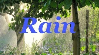 ☂ Sound Therapy ~ Perfect Rain ~