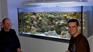 A perfect german reef aquarium vol.1