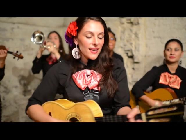 Mariachi Flor De Toloache - Blue Medley