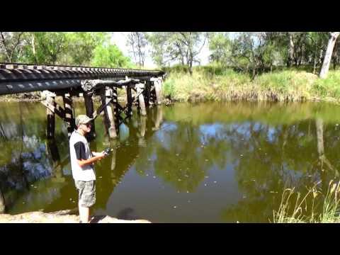 Fishing Cecil Plains Weir,  Darling Downs SE Qld