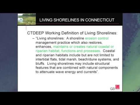 What are Living Shorelines/Where do they work?