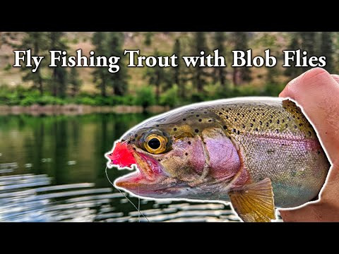 Fly Fishing Trout With Blob Flies [Powerbait Of Flies]