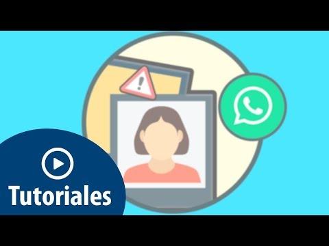 Por Qué No Me Aparece La Foto De Un Contacto En WhatsApp