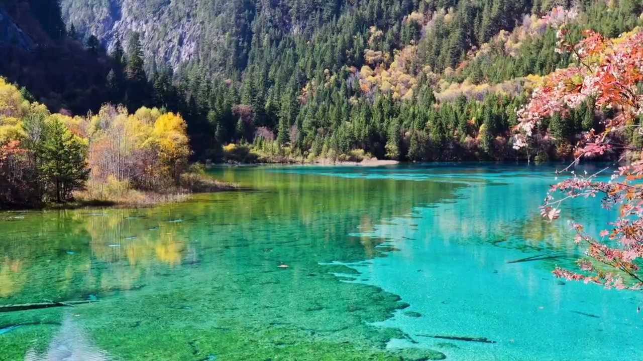 Fall Watch Wallpapers Jiuzhaigou Valley Cina Unesco World Heritage Site