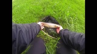 Pêche de la truite au leurres en no kill