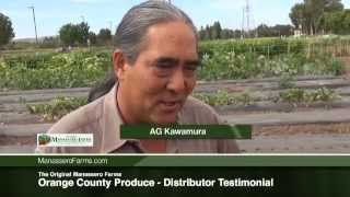 The Original Manassero Farms - Orange County Produce - Distributor Testimonial