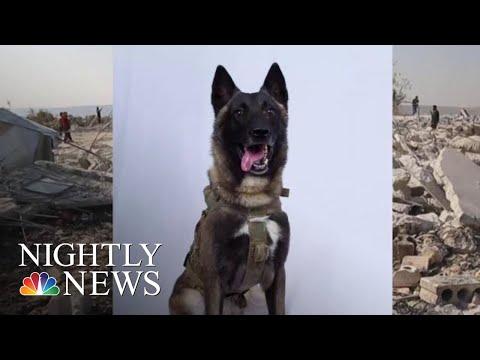President Donald Trump Releases Photo Of 'Hero Dog' In Al-Baghdadi Raid   NBC Nightly News