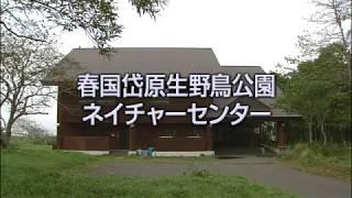 春国岱ネイチャーセンター(イメージ画像)