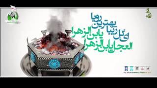 Ey Gole Taha, Şaheye Tuba, El Ecel Yebne Zehra | HD