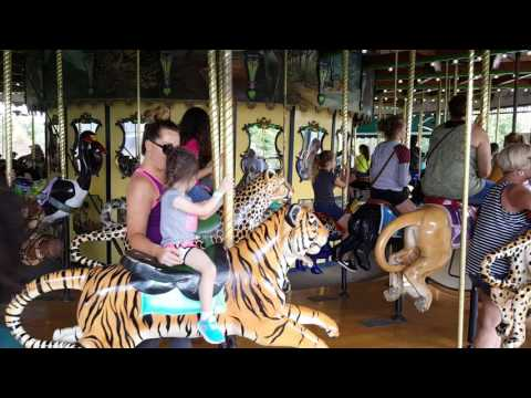 Ireland and mommy at the St Louis zoo