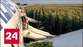Юрий Сытник об аварийной посадке А321: экипаж показал, как должны садиться русские летчики - Росси…