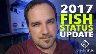 Creative Fish Studio 2017 Status Update