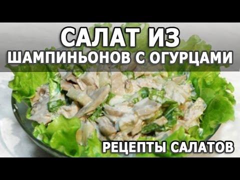 Рецепты салатов. Салат из шампиньонов с огурцами простой рецепт приготовления