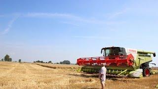 5 kombajnów vs. pszenica ozima ! Żniwa 2014