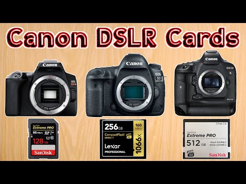 Best Memory Card For Canon DSLR Cameras – Choosing The Best SD Card For Video On Canon Cameras