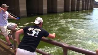Barkley Dam Bowfishing
