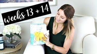 Twin Pregnancy Vlog Weeks 13 + 14 | Kendra Atkins
