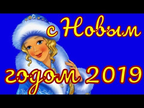 Поздравление с Новым годом 2019 прикольные поздравления на Новый Год - Смешные видео приколы
