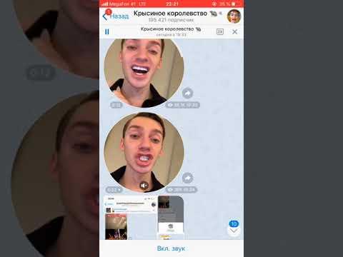 Верона обманывает Андрей Петров о канале раскрутки Вероны Скандал Инстасамка и Верона
