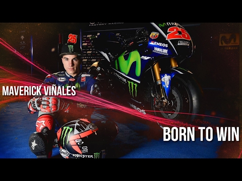 Maverick Viñales - Born to Win