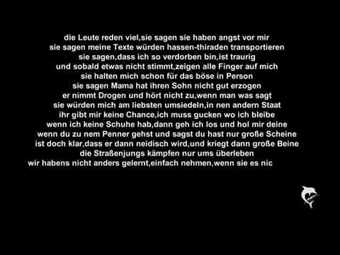 Sido - Straßenjunge [with Lyrics]