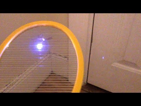 new!---best-electric-fly-swatter:-executioner-vs.-zap-it!-vs.-elucto---bug-zapper-review