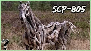what-if-scp-805-was-real