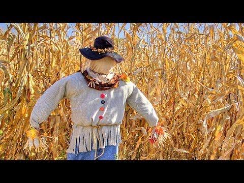 Make A Scarecrow Youtube