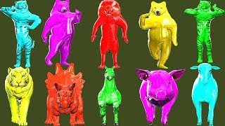 wild animals finger family song for kids   nursery rhymes,children,toddlers,lion,NASH TOON Tv