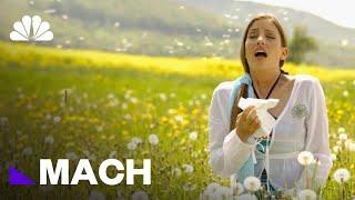 'Pollen Tsunami': Why Allergies Seem To Get Worse Every Year | Mach | NBC News
