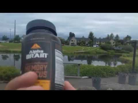 alpha-brain-by-onnit---top-reviews