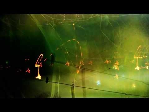 bird on a wire (taylor deupree/stephen vitielo)