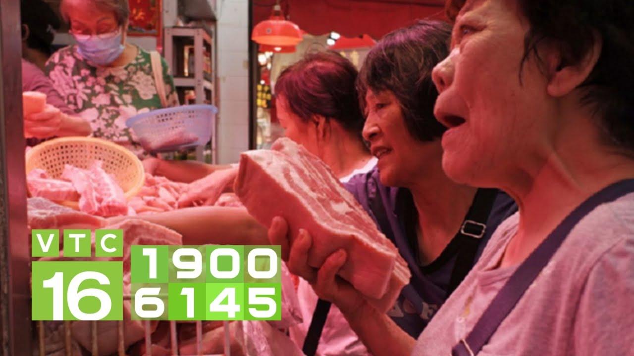 Giá thịt lợn đắt đỏ: Chính phủ yêu cầu phải giảm ngay   VTC16