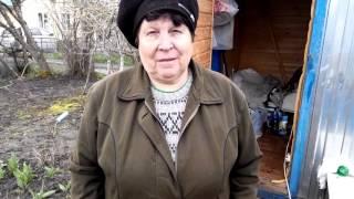 Бурим Абиссинский колодец на даче(, 2016-04-23T17:04:14.000Z)