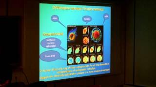 X Ray imaging: dalla mano di Mrs. Roentgen alla mappatura sub-cellulare degli elementi