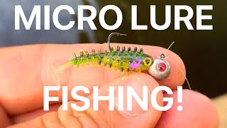 Perch Fishing with Micro Lures