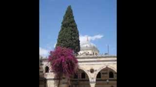 Siria: appunti di viaggio!