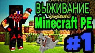 Выживание в Minecraft PE #1| CrazyBad